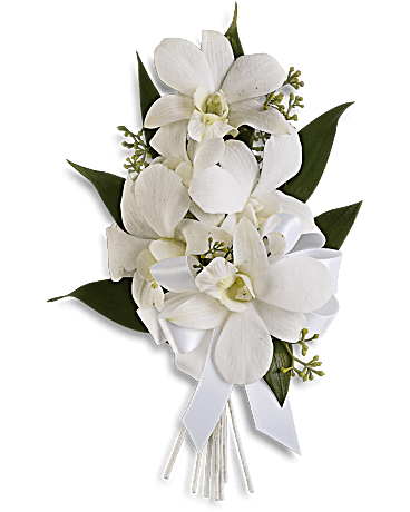 Graceful Orchid Corsage
