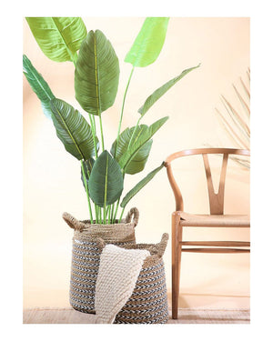 Oblong Natural Planter