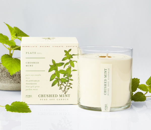 Seeds - Crushed Mint Candle