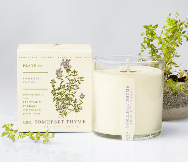 Seeds - Somerset Thyme Candle