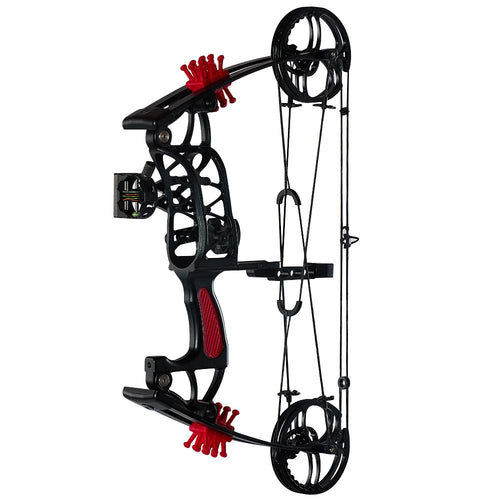 Night Eagle Compound Bow