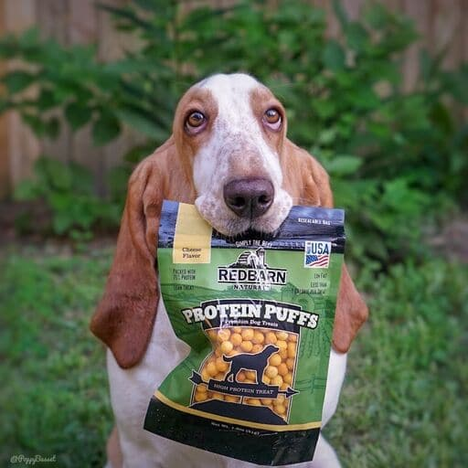 Redbarn Protein Puffs for Dogs