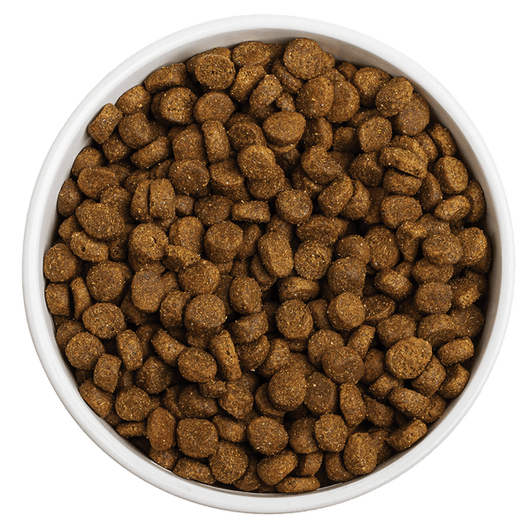 Now Available!<br></br>Grain-Free Land Recipe Dog Food- Redbarn