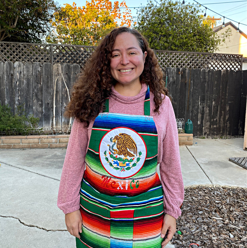 Mexican Eagle Seal Satillo Blanket Apron