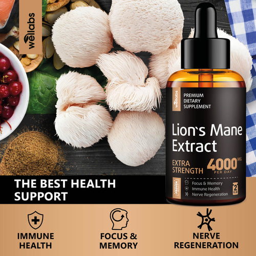 lion's mane supplement