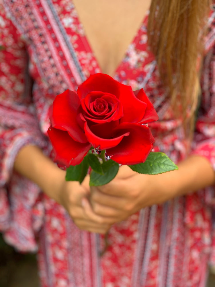 Load image into Gallery viewer, Single red rose