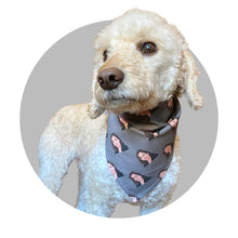 Load image into Gallery viewer, Dog Bandana - Kamala Harris