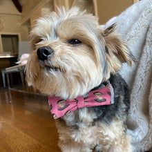 Load image into Gallery viewer, Dog Bow Tie Ruth Bader Ginsburg