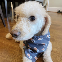Load image into Gallery viewer, Dog Bandana