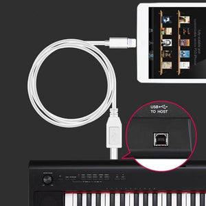 OEM iPhone / iPad Lightning Male to USB Type-B OTG Cable to Music Instruments / Guitar / MIDI