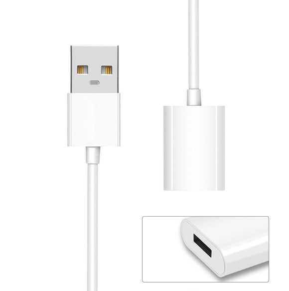 OEM Apple Pencil Charging Cable / iPad Pro Pencil Charge Cable (USB Male to Lightning Female)