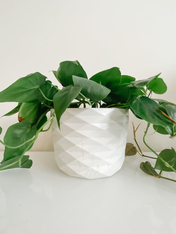 XL Diamond Planter White