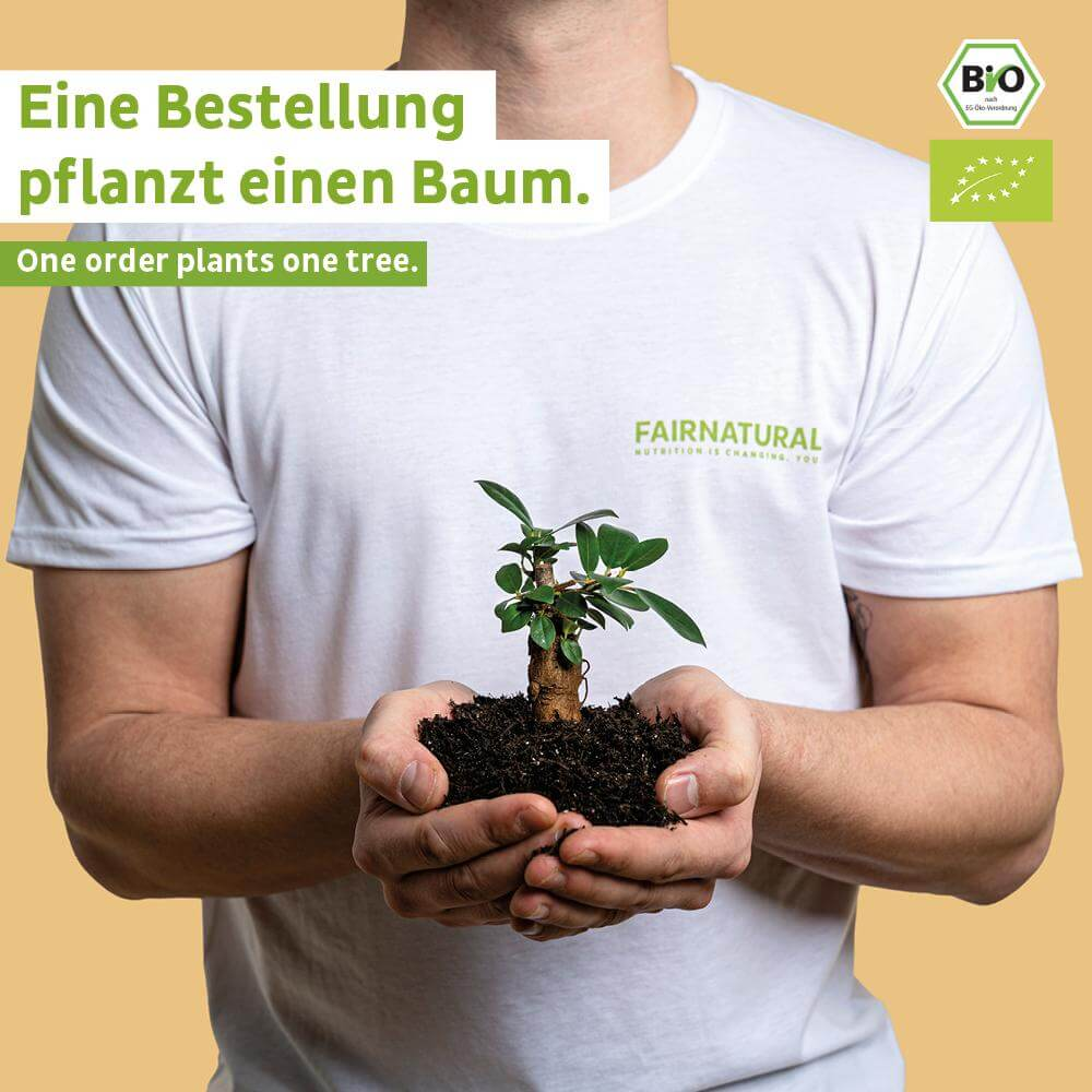 Organic Vegan Chocolate Protein Bar