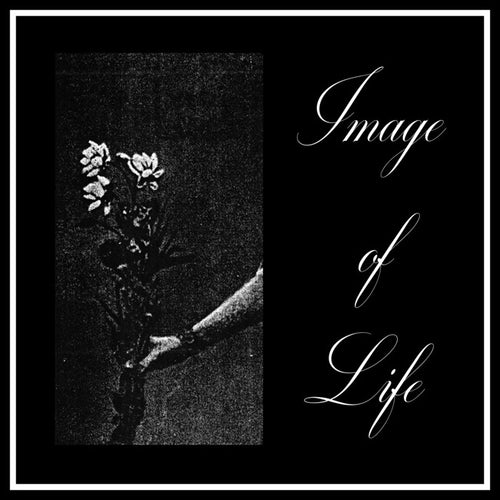 Image Of Life ‎– Attended By Silence, hertz054