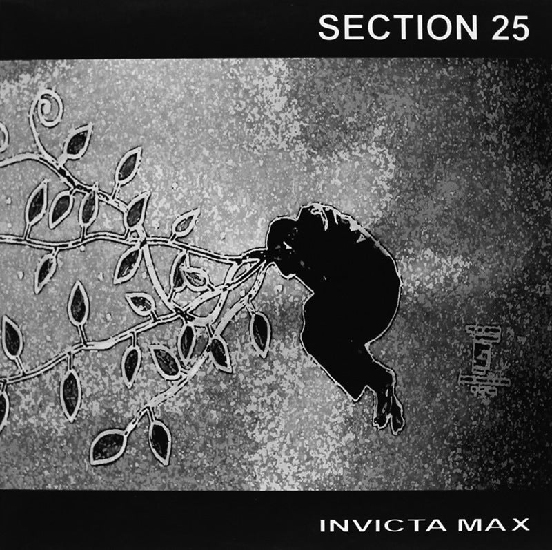 Section 25 - Invicta Max