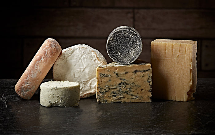 Scientists create cheese from human toe bacteria! | Betterman