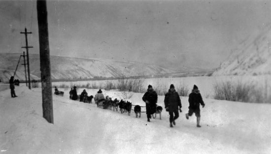 On their Way, Dawson - McPherson Patrol. Winter of 1919-20. Dawson, Y.T