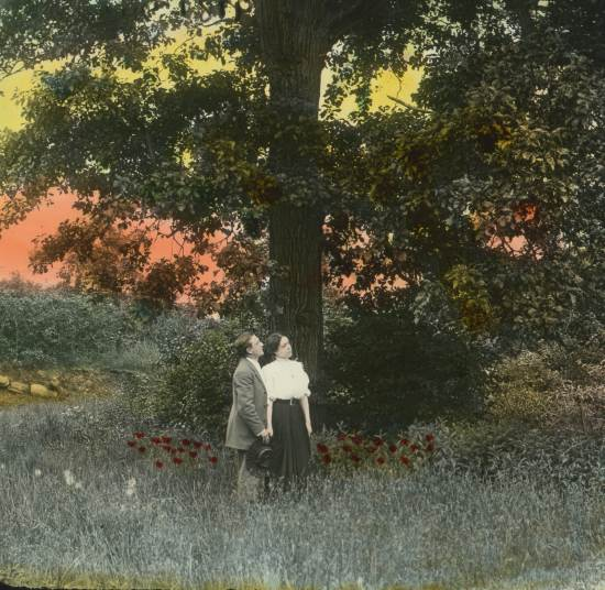 Neath the Corn Tree Sweet Estelle Lantern Slide Production, n.d.