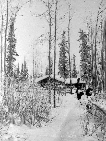 A Home In The Yukon A Scene On The Alaska Commercial Trail, c1910.
