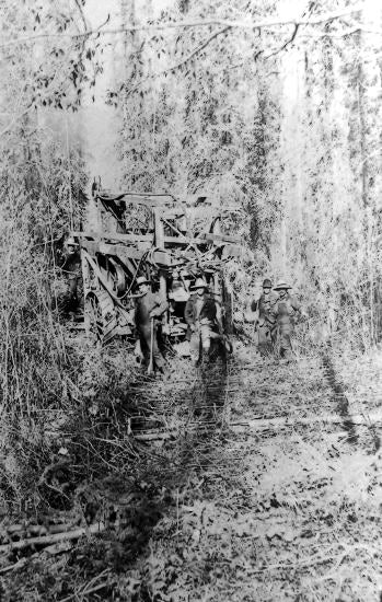 Keystone Churn Drill Coming Through Heavy Woods Under its Own Steam, c1912.