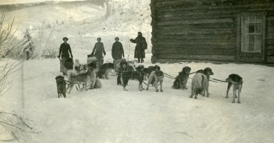 Travelling by Dog Sled, c1915.