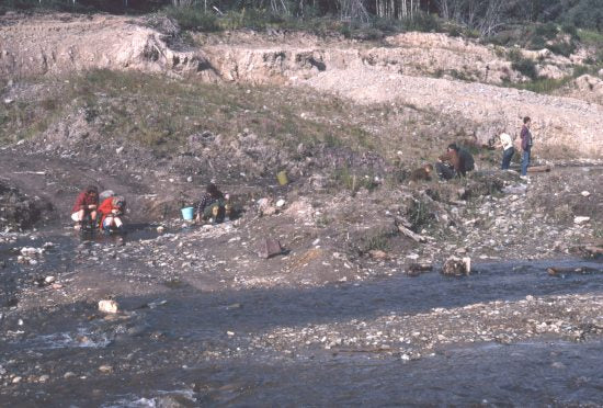 Panning on Bonanza Creek, 1970.