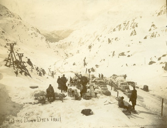 Looking Down Dyea Trail, c1898.