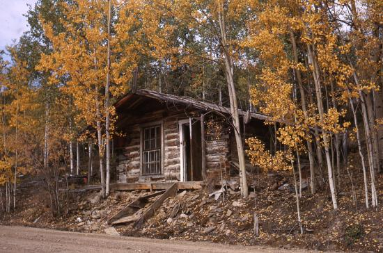 Cabin on Dominion Creek,  September 1963.