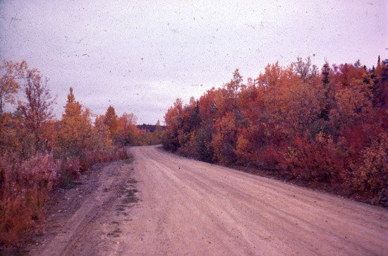 Road on Bonanza Creek, September, 1975.