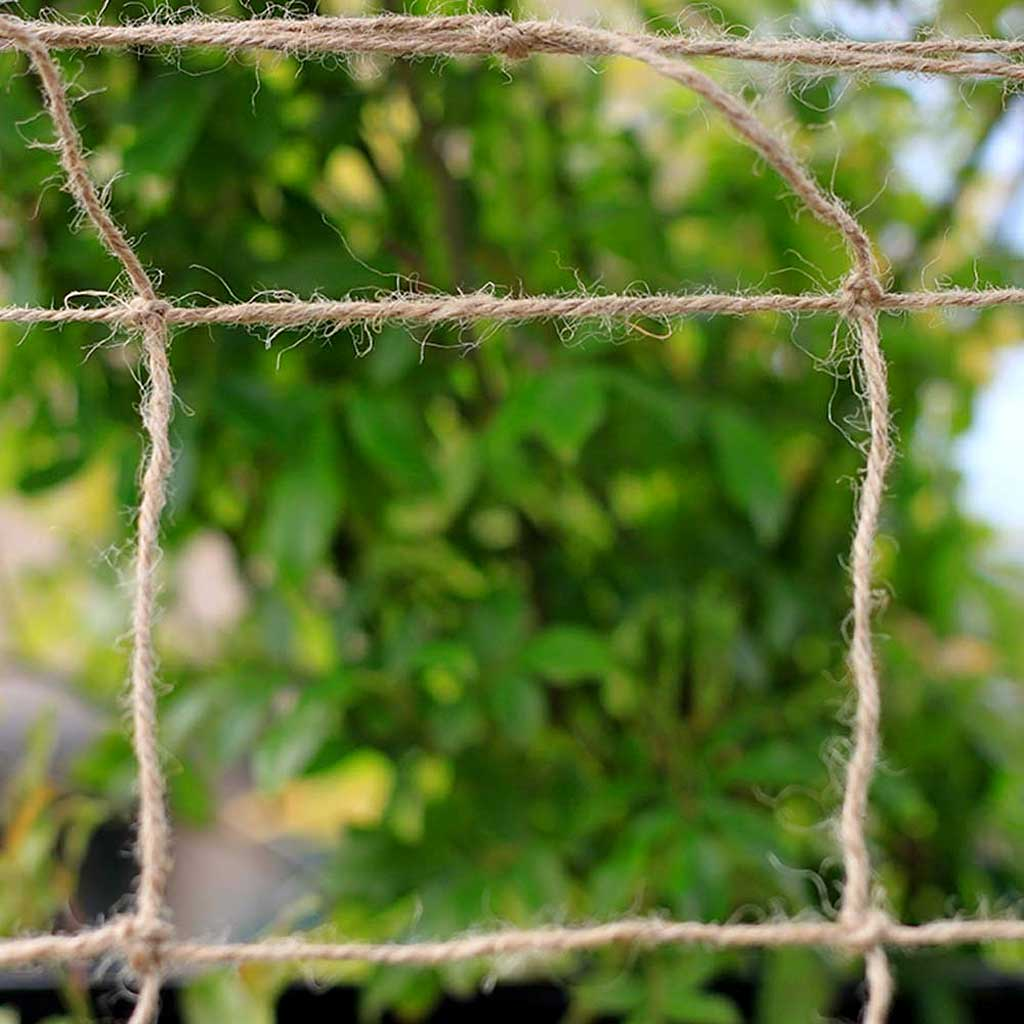 MainframeDirect  - jute netting close up