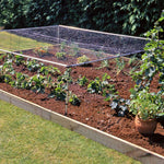 MainframeDirect -strawberry cage on raised bed