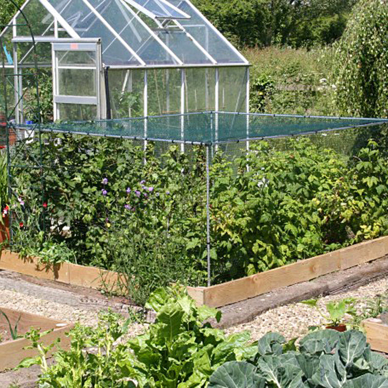 Mainframe direct -soft fruit cage netting - in use over raised bed