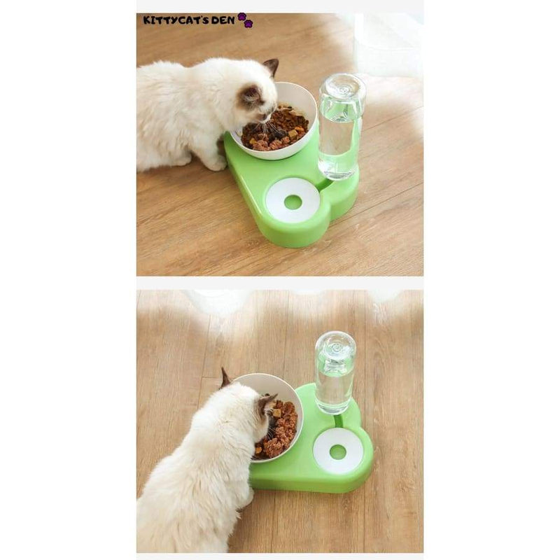 Elevated Anti Vomiting Cat Food & Water Bowl + Automatic