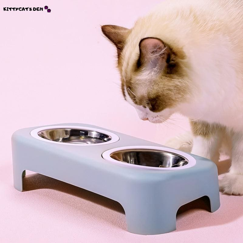 Elevated & Tilted Double Stainless Steel Small Cat Food &