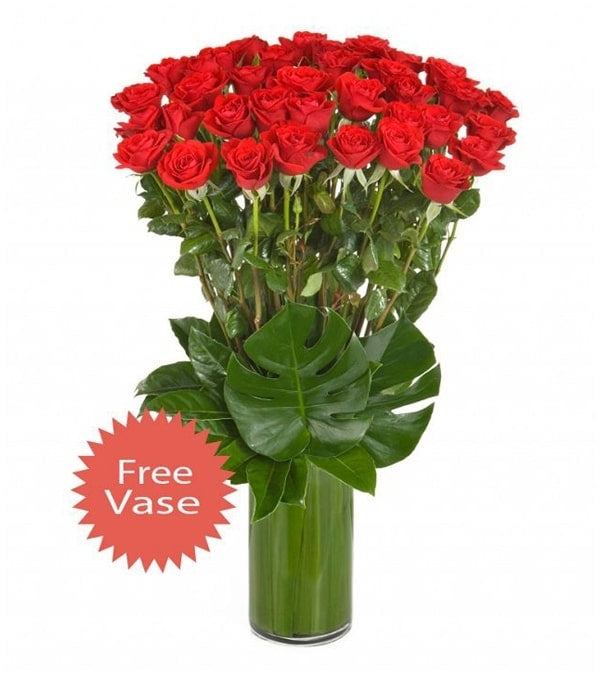 36 Long Stem Red Roses in a Glass Vase