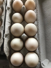 Load image into Gallery viewer, DUCK Eggs Farm Fresh Eggs - per dozen