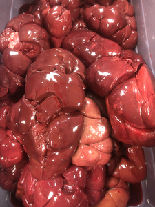 Bison Kidney Whole or Ground
