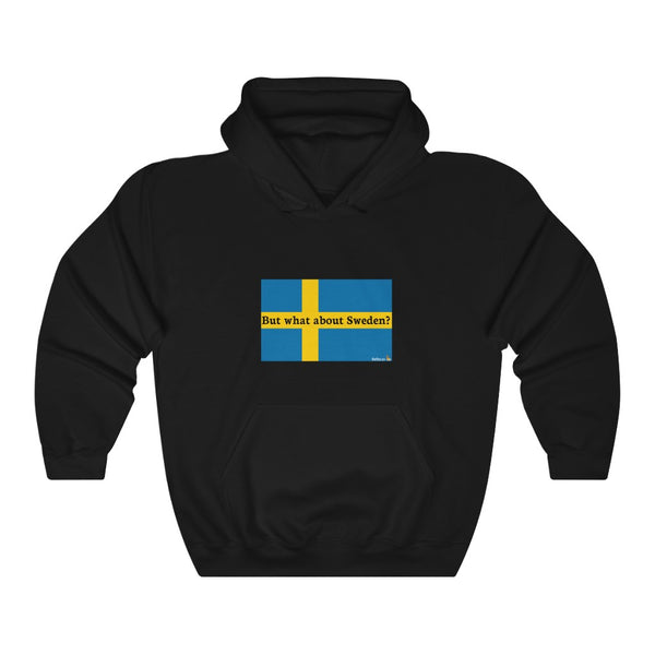 But what about Sweden? hoodie