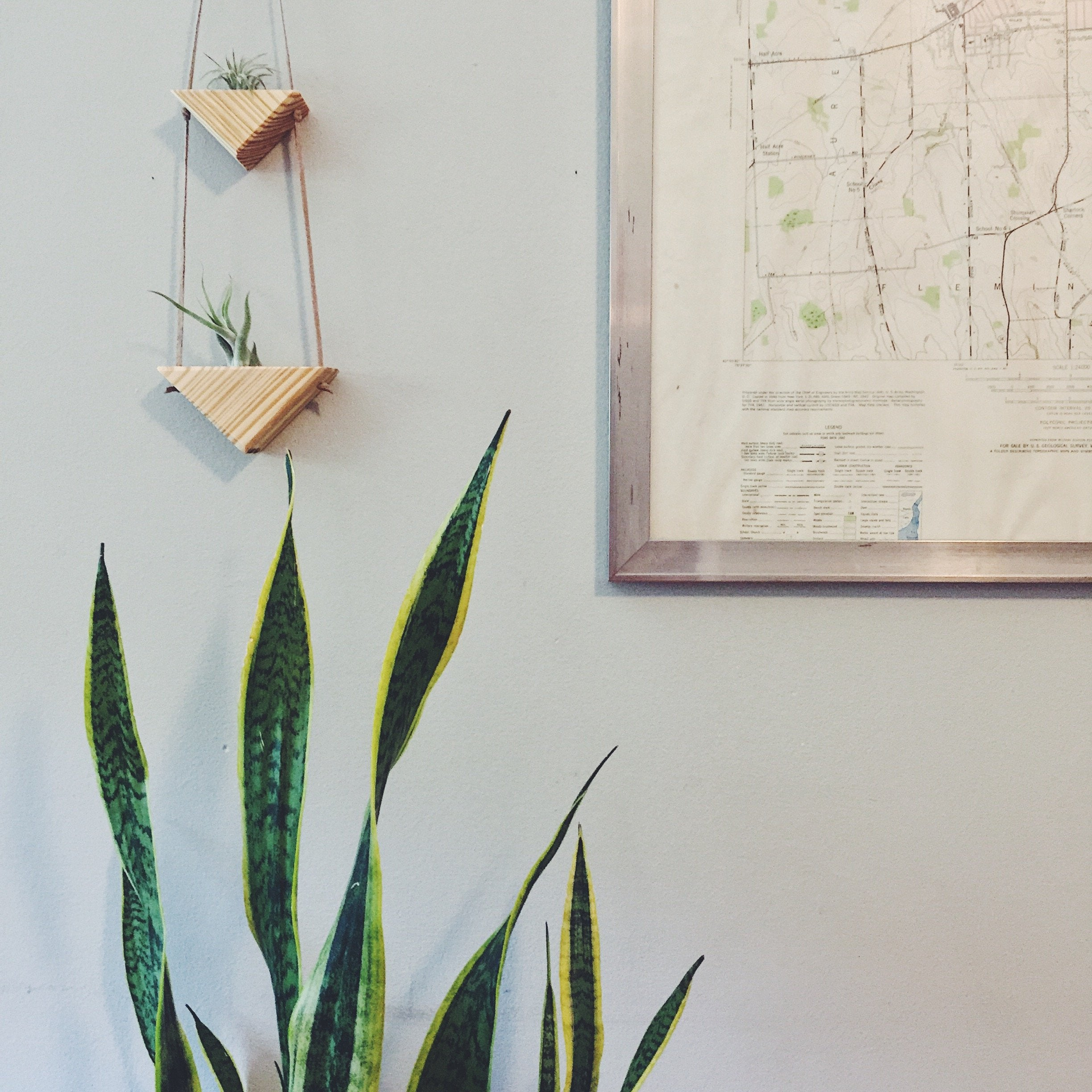 Triangle Air Plant Wall Hanging