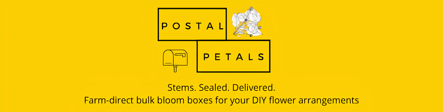 Postal Petals - Farm direct bulk bloom boxes for your DIY arrangements