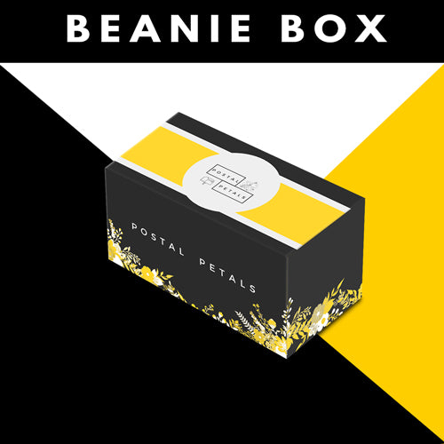 BEANIE BOX | Postal Petals | Farm Direct Bulk Bloom Boxes for Your DIY Arrangements