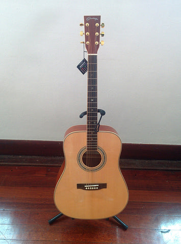 Santiago Acoustic Guitar FG-740N (reviewed)