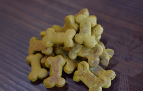 Peanut Pumpkin Dog Treats (GF)