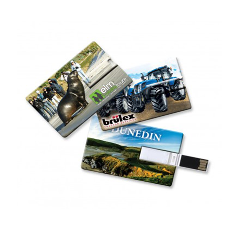 2GB Credit Card Usb with Full Colour Logo Print
