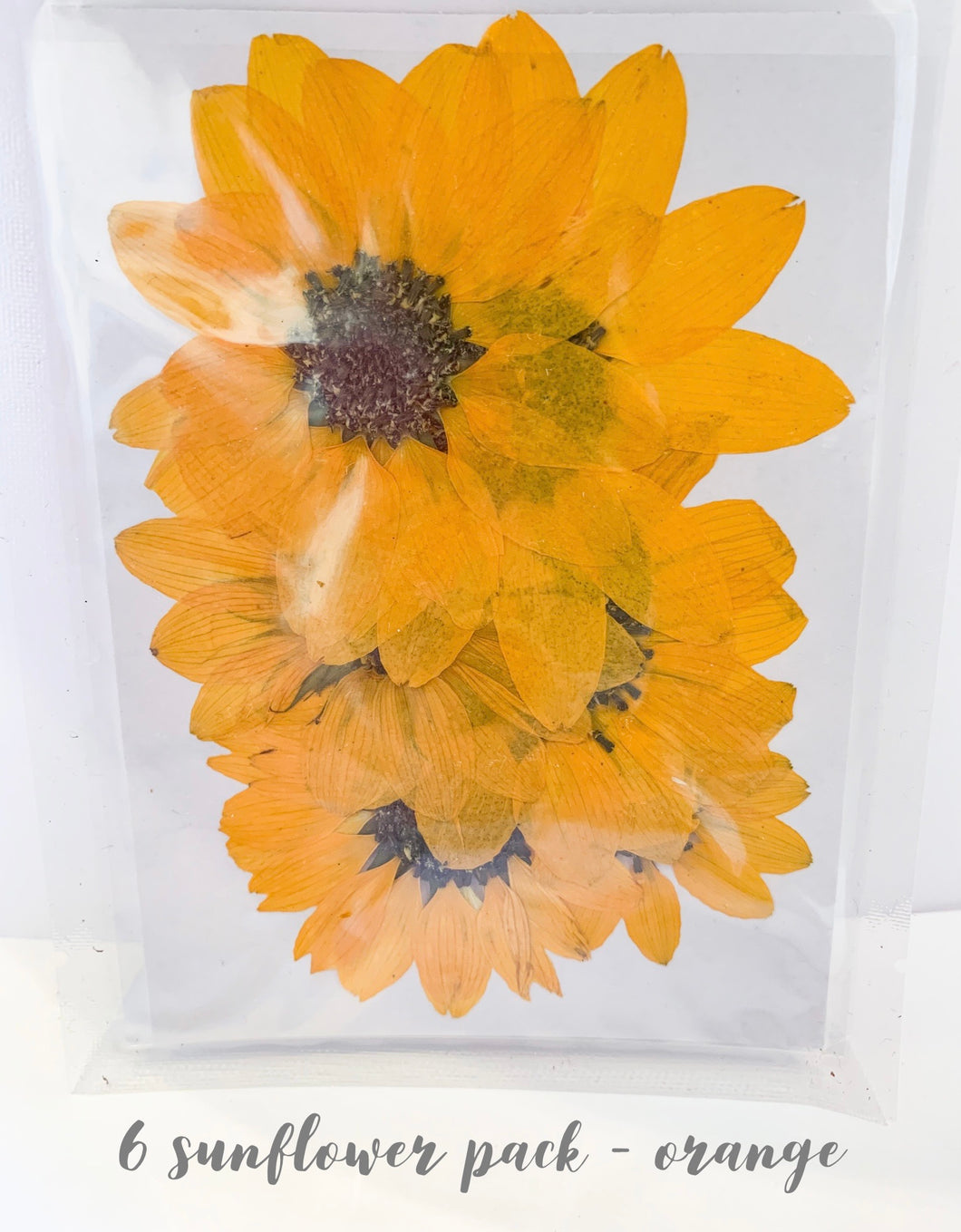6 Sunflower pack - Orange