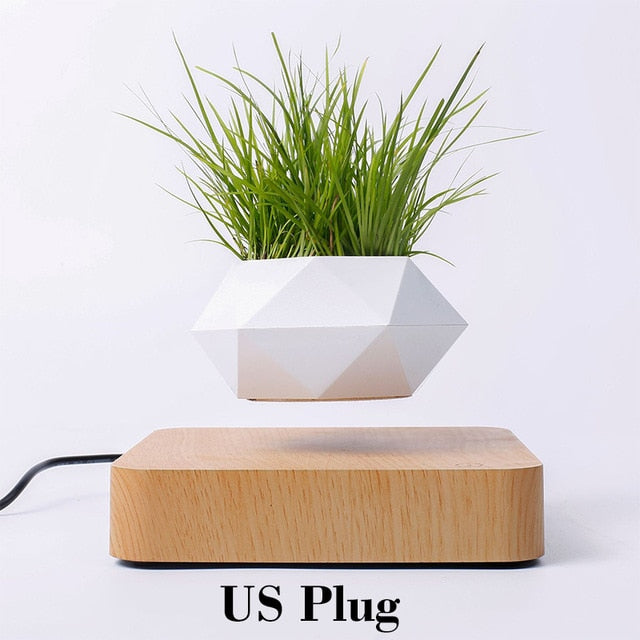 Levitating Plant Pot (Plant not included)
