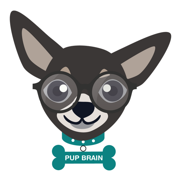 What the heck is Pup Brain?