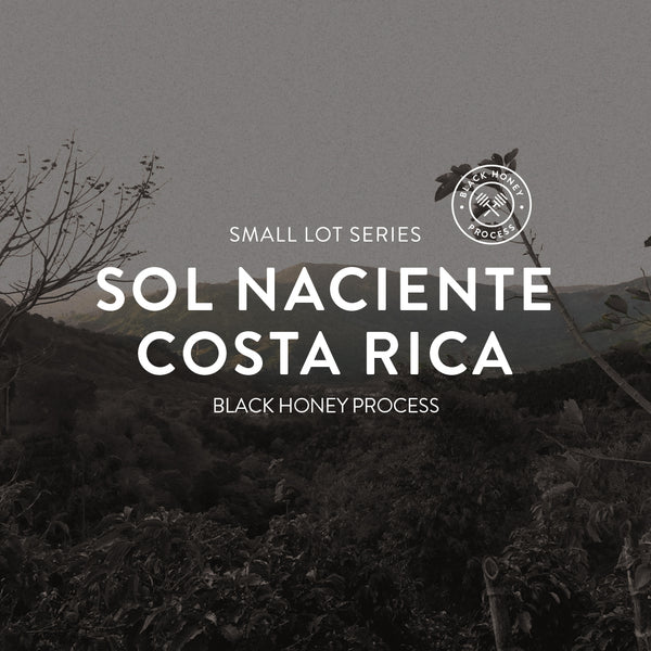 Sol Naciente Costa Rica Honey Processed Black