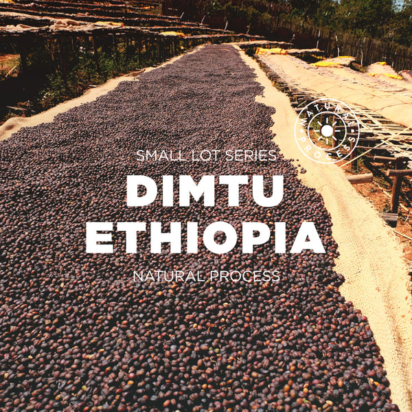 Ethiopia Dimtu - Natural process