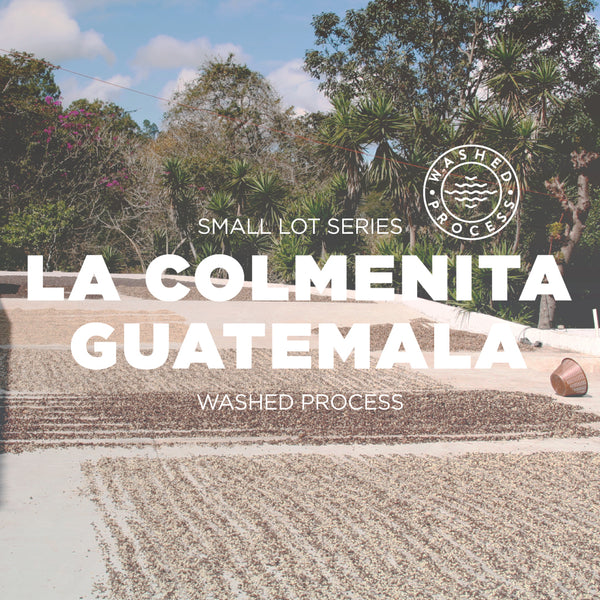 La Colmenita Guatemala - washed process